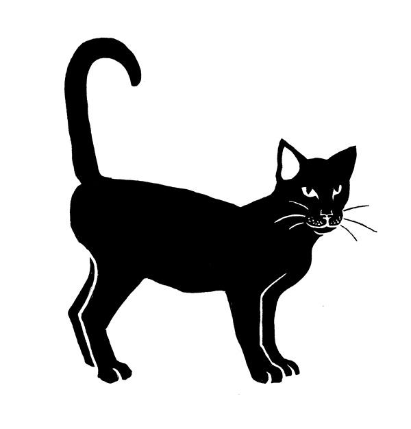 black-cat-andres